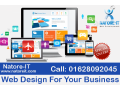 web-design-for-your-business-small-0