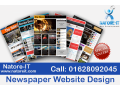 newspaper-website-design-small-0