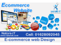 e-commerce-web-design-small-0