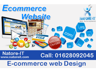 E-commerce web Design