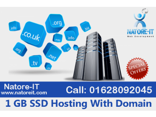 1 GB Hosting With Domain service