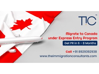Best Immigration Consultants In Chandigarh For Canada | Study Visa – TIC